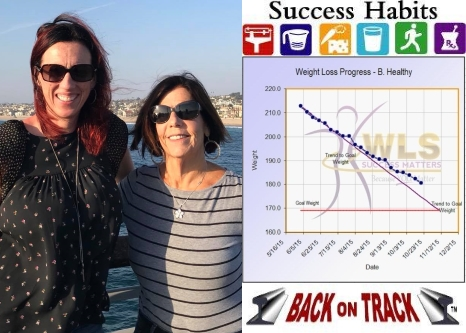 Success Habits - Back On Track display bar